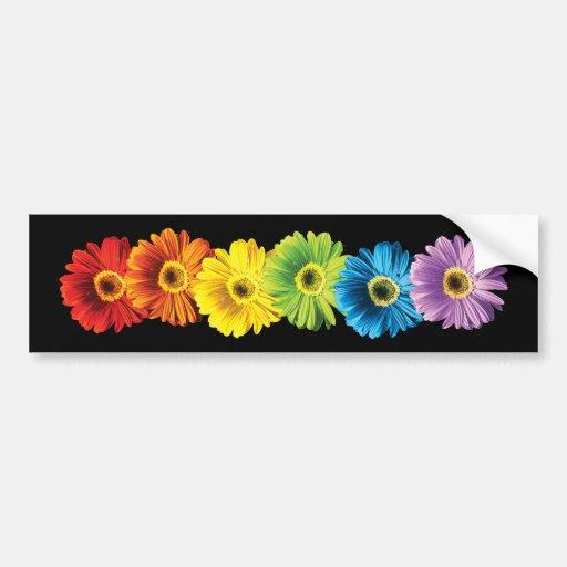 Rainbow Daisies Bumper Stickers