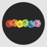 Rainbow Daisies Round Stickers