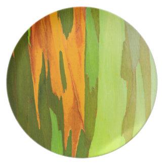 Rainbow Eucalyptus bark, Hawaii Party Plate