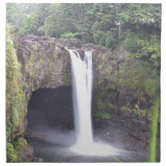 Rainbow Falls Hawaii Napkin