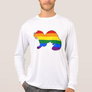 Rainbow Ferret T-Shirt
