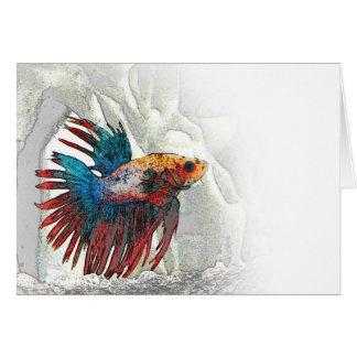 Rainbow Fish Notecard