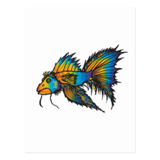 Rainbow fish postcard