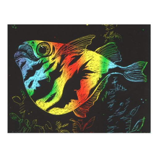 Rainbow Fish postcard - horizontal format
