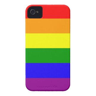 Rainbow flag case