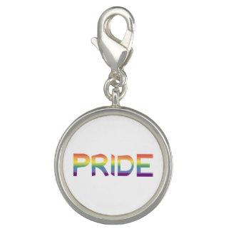 Rainbow Flag Pride Charm