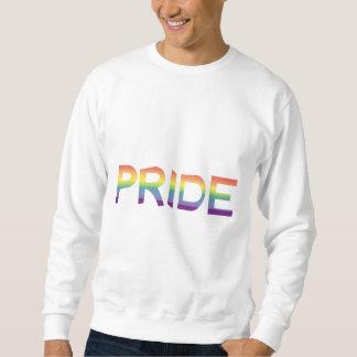 Rainbow Flag Pride Sweatshirt