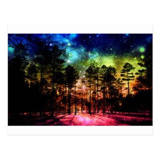 Rainbow Forest Postcard