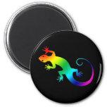 Rainbow Gecko Dark Magnet