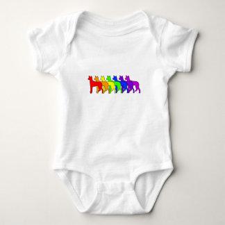 Rainbow Ibizan Baby Bodysuit