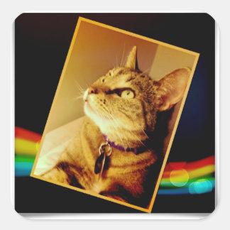 Rainbow Indigo Square Sticker