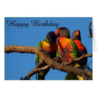 Rainbow Lorikeet blank birthday card