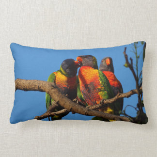 Rainbow Lorikeet double sided lumbar cushion