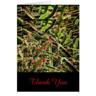 Rainbow Lorikeet in cactus blank thank you card