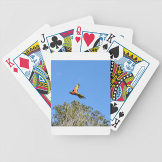 RAINBOW LORIKEET IN FLIGHT QUEENSLAND AUSTRALIA BICYCLE PLAYING CARDS