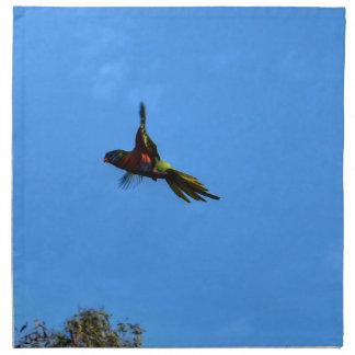 RAINBOW LORIKEET IN FLIGHT QUEENSLAND AUSTRALIA NAPKIN