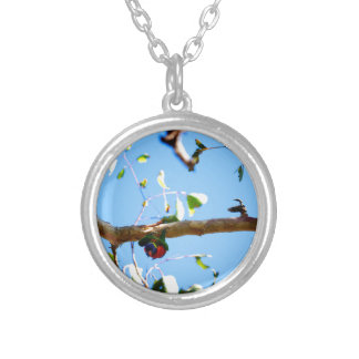 RAINBOW LORIKEET IN FLIGHT QUEENSLAND AUSTRALIA SILVER PLATED NECKLACE