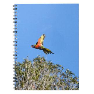RAINBOW LORIKEET IN FLIGHT QUEENSLAND AUSTRALIA SPIRAL NOTEBOOK