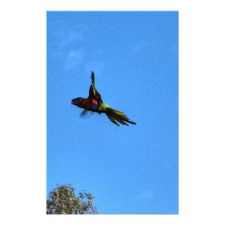 RAINBOW LORIKEET IN FLIGHT QUEENSLAND AUSTRALIA STATIONERY