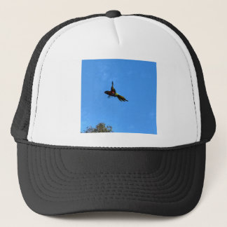 RAINBOW LORIKEET IN FLIGHT QUEENSLAND AUSTRALIA TRUCKER HAT