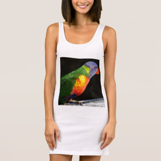 Rainbow Lorikeet Ladies Singlet Tank Dress