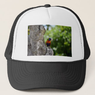 RAINBOW LORIKEET QUEENSLAND AUSTRALIA TRUCKER HAT