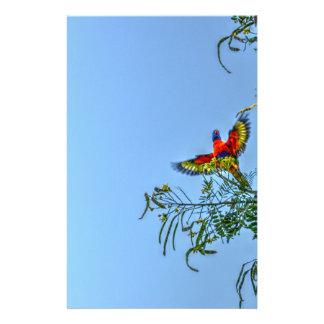 RAINBOW LORIKKET AUSTRALIA ART EFFECTS STATIONERY