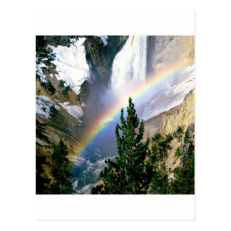 Rainbow Lower Falls Yellowstone Postcard