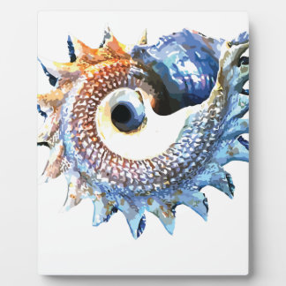 Rainbow Mandala Seashell Golden Spiral Yoga Tee Plaque