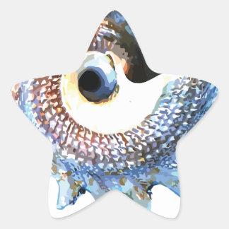 Rainbow Mandala Seashell Golden Spiral Yoga Tee Star Sticker