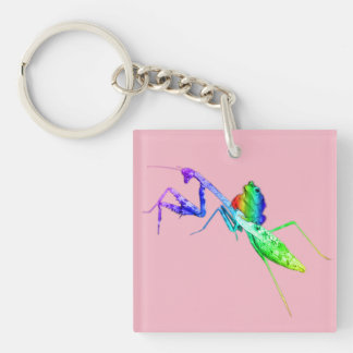 Rainbow Mantis and Toad Keychain
