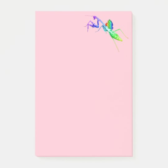 Rainbow Mantis and Toad Post-it Notes