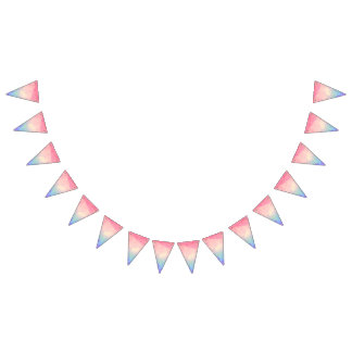 Rainbow Marbled Bunting Flags