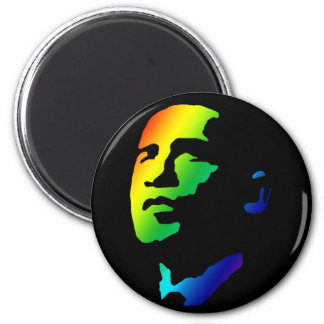 Rainbow Obama magnet