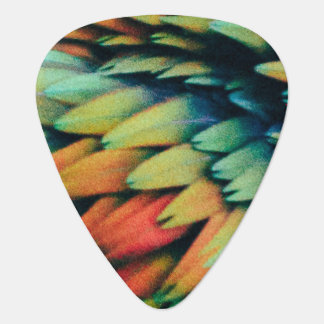 Rainbow of Colorful Bird Feathers Guitar Pick