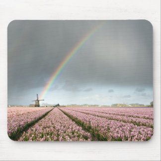 Rainbow over hyacinths and a windmill in Holland Mouse Pad
