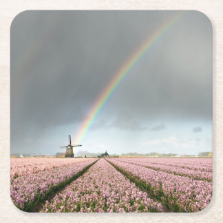 Rainbow over hyacinths and a windmill in Holland Square Paper Coaster