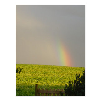 Rainbow Over Sweden Postcard