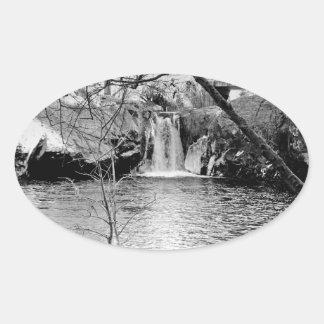 RAINBOW POOL, NEAR YOSEMITE: BARE BRANCHES #11 OVAL STICKER