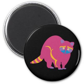 Rainbow Raccoon Magnet