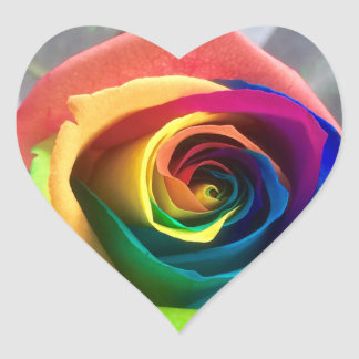 Rainbow rose stickers
