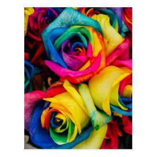 Rainbow Roses Postcard