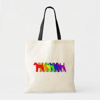 Rainbow Smooth Fox