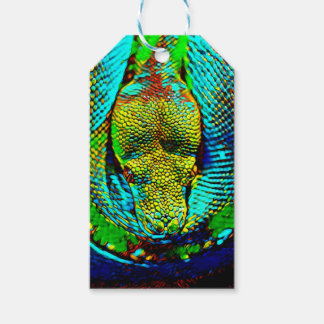 Rainbow Snake Pack Of Gift Tags
