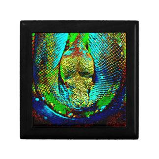 Rainbow Snake Trinket Box