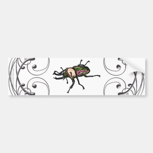 Rainbow Stag Beetle Bumper Stickers