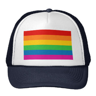 Rainbow Stripes Mesh Hat