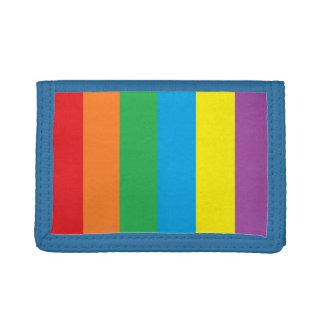 """""""Rainbow Stripes"""" Wallet"""