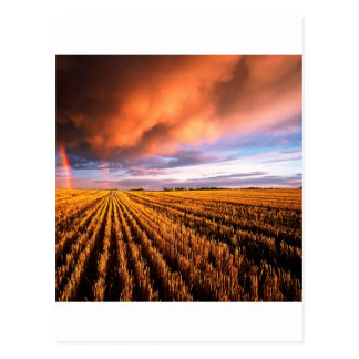 Rainbow Stubble Field Saskatchewan Canada Postcard