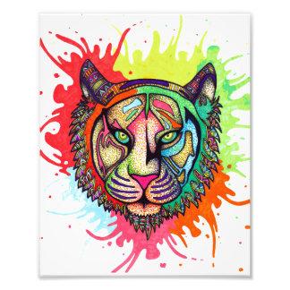 Rainbow Tiger Photo Print